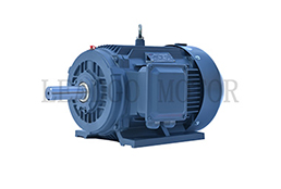 YX3(YE2、IE2)Series High Efficiency Three Phase Asynchronous Motor
