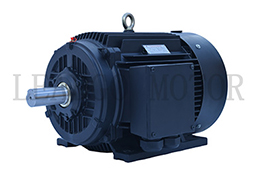 TYP Series High Efficiency Permanent Magnetic Variable Frequency Synchronous Electric Motor