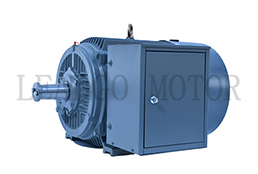 Y Series High Voltage High Efficiency Three Phase Induction Electric Motor