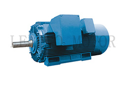 Y2,YX2 Series High Voltage Three Phase Induction Electric Motor