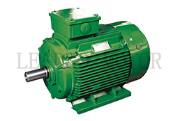 YDT Series Dedicated for Fan Pumping Pole-changing Multi-speed Three Phase Asynchronous Motor